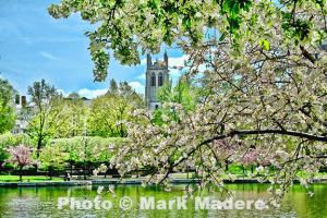 Maderes Photos Accepted For Prestigious Exhibition